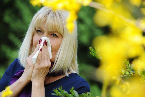 Senior woman blowing her nose outdoors by yellow flowers