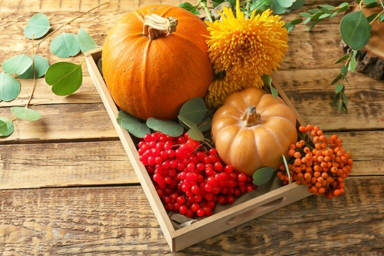 Two-pumpkins-currants-flowers-in-wooden-tray-on-wooden-table