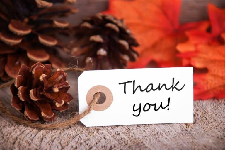 thank-you-tag-in-front-of-fall-leaves-and-pinecones